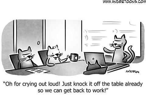 Pet Cartoons